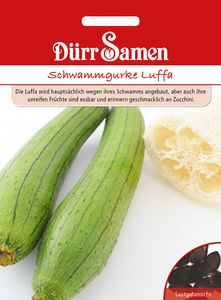 Dürr Samen - Schwammgurke Luffa