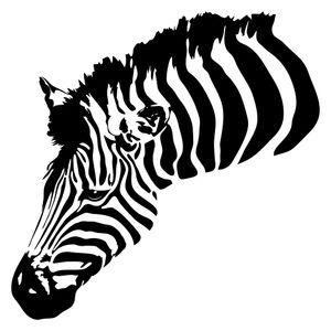 dekodino® Wandtattoo Afrika Zebra Tierbild Wandsticker Deko