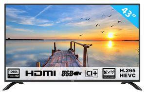 HKC 43F3 109 cm (43 Zoll) LED Fernseher (Full HD, Triple Tuner, CI+, HDMI, Mediaplayer per USB 2.0)