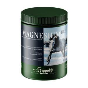 St. Hippolyt Magnesium B12 1 kg