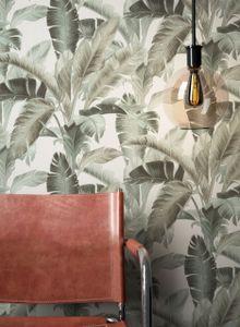 Tapete Dschungeltapete Grün   Tropisch Floral Modern Dschungel Blätter Bananenblatt Curtis