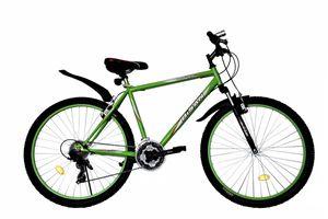 26 Zoll Herrenfahrrad Herrenrad Jugend Herren Fahrrad Mountainbike MTB Rad Bike Gabelfederung Federgabel 21 Gang Beleuchtung STVO Grün 4200