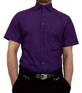 Designer Herren Kurz Arm Hemd Bügelfrei klassischer Kragen Herrenhemd Kentkragen viele Farben Kurzarm, Größe klassische Hemden:40 / M, Farbe Klassische Hemden:Violett