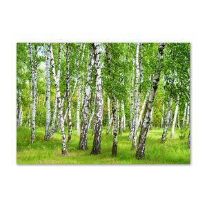 Tulup® Leinwandbild - 100x70 cm - Wandkunst - Drucke auf Leinwand - Leinwanddruck  - Landschaften - Grün - Birkenwald