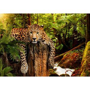 Leopard 9201a RUNA Leopard VLIES FOTOTAPETE XXL DEKORATION TAPETE− WANDDEKO 352 x 250 cm