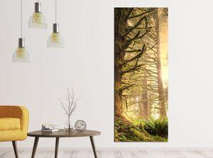 Leinwandbilder 1Tlg 40x100cm Dschungel Regenwald Wald Sonne Leinwandbild Kunstdruck Wand Bilder Vlies Wandbild Leinwand Bild Druck 9ZA1209, Leinwandbild Gr. 1:40cmx100cm