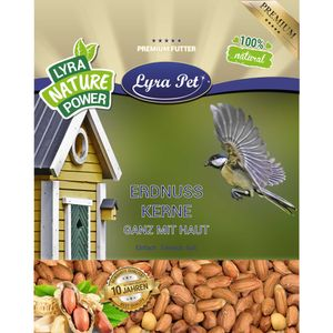 25 kg Lyra Pet® Erdnusskerne mit Haut HK Afrika