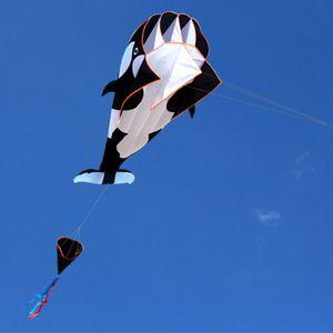 3D Große Wal Drachen Rahmenlose Outdoor Spielzeug Flugdrachen 215*120cm Drachenfliegen mit 30m Flugschnur