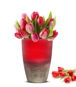 Blumenvase Oxi Tischvase Glasvase Dekovase Vase Blumentopf Pflanztopf (Rot)