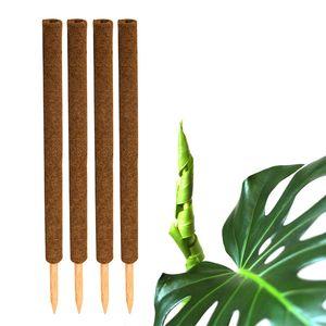 4x Kokos Pflanzstab 80cm Rankstab Kokosfaserstab Kokosstab verlängerbar