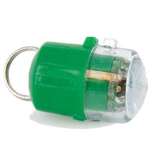 Ersatzschlüssel + Halsband Für Staywell 500, Grün