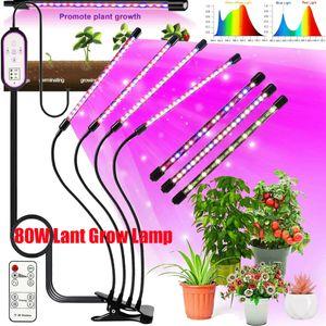 4 Kopf Pflanzenlampe, 80W LED Vollspektrum Grow Lampe Pflanzenlichtmit 3 Timer für Garten Zimmerpflanzen