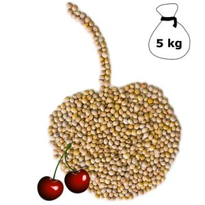 Kirschkerne lose für Wärmekissen Kirschkernkissen 5 kg Kissen Waermekissen Baby Füllung Körnerkissen Kerne Koernerkissen Füllmaterial Kirschkern DML