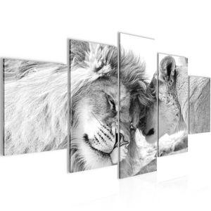 Löwen Liebe BILD :200x100 cm − FOTOGRAFIE AUF VLIES LEINWANDBILD XXL DEKORATION WANDBILDER MODERN KUNSTDRUCK MEHRTEILIG 002151c