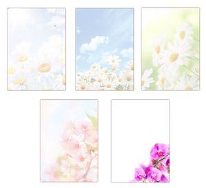 5 x 10 Blatt im Set Briefpapier DIN-A4 Blumen Margeriten Kirschblüten Orchideen Motivpapier (MPA-5221)