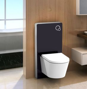 Sanitärmodul für Wand-WC (Schwarzglas)