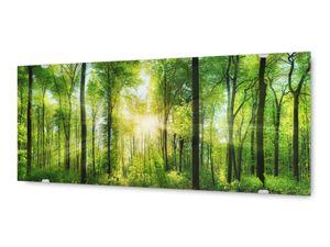 Glasbild Wandbild GLX12582972458 Wald Licht 125 x 50cm