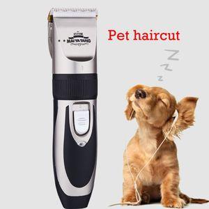 Metal Professional Hair Clipper Elektrischer schnurloser Haarpflegemittel-Haarschnitt