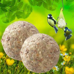 200 Stk. Lyra Pet® Gourmet Meisenknödel schalenfrei ohne Netz