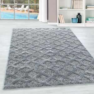 Teppium Kurzflor modern Teppich, Wohnzimmerteppich,Rechteckig GRAU, Farbe:GRAU,240 cm x 340 cm