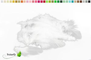 Bastelfedern 5-10cm, ca. 80-100 Stück, Farbauswahl:weiß 029