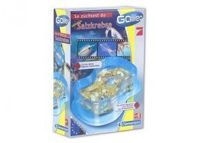 Clementoni Galileo Kleine Experimentierbox Salzkrebse züchten