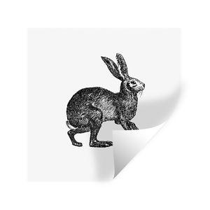 Wandaufkleber - Vintage - Hase - Schwarz - Weiß - 30x30 cm - Repositionierbar