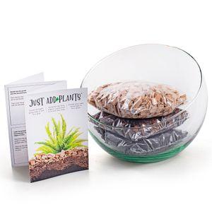 XXL Pflanzenterrarium- Nur noch Pflanze dazu - Fertig H 20 cm - Ø 23 cm