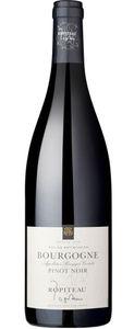 Ropiteau Frères Bourgogne Pinot Noir AOP 2019 (1 x 0.75 l)