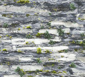 A.S. Création Steintapete Il Decoro Tapete in Naturstein Optik Papiertapete grau schwarz grün 10,05 m x 0,53 m