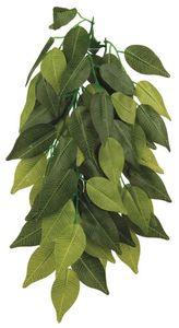 Seiden-Hängepflanze, Ficus, ø 20 × 30 cm