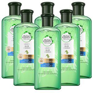 6 x Herbal Essences PUR renew Aloe & Bambus Shampoo je 225ml Stärke&Feuchtigkeit