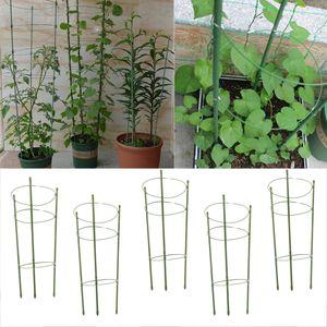 5pcs Tomatenturm Aufzuchtturm Rankturm mit Rankhilfe für  Zimmerpflanzen und Kletterpflanzen mit Ringe