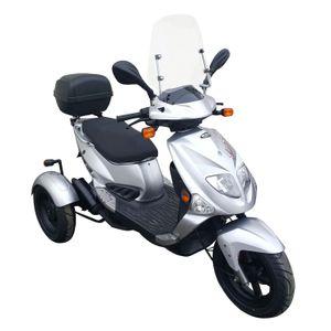 PGO TR3 Dreirad, Roller 25 km/h silber Topcase Schild