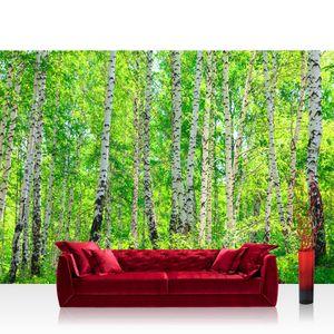 Fototapete Birch Forest Wald Tapete Birkenwald Bäume Wald Sonne Birkenhain Birke Birken Gras Natur Baum grün   no. 7, Größe:400x280 cm, Material:Fototapete Vlies - PREMIUM PLUS
