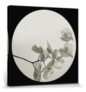 Blumen Poster Leinwandbild Auf Keilrahmen - Orchideen II, Ian Winstanley (60 x 60 cm)