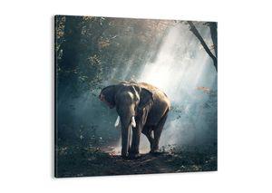 "Leinwandbild - 50x50 cm - ""Ein gemütlicher Spaziergang""- Wandbilder - Elefant Wald Dschungel - Arttor - AC50x50-3972"