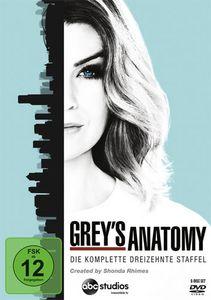 Greys Anatomy - Kompl. Staffel 13 (DVD) Min: 1008DD5.1WS   6DVDs