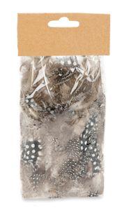 Perlhuhnfedern natur im Beutel mit 5g | Perlhuhn Feder | Dekofedern | Perlhuhnfeder | Deko Feder | Bastelfedern