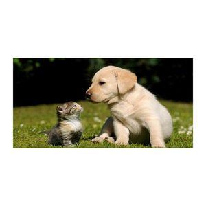 Tulup® Leinwandbild - 120x60 cm - Wandkunst - Drucke auf Leinwand - Leinwanddruck - Tiere - Beige - Hund Katze Wiese