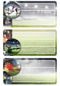 """HERMA Buchetiketten """"Football"""" beglimmert 76 x 35 mm 2 Blatt à 3 Etiketten"""