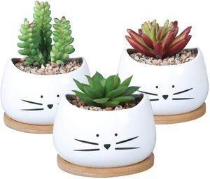 4 Zoll süße Katze Keramik Sukkulenten Pflanzgefäße mit abnehmbarer Untertasse Einzigartige Kaktus Pflanzgefäße Dekorativer Blumentopf aus Porzellan für Katzenliebhaber 3er-Set