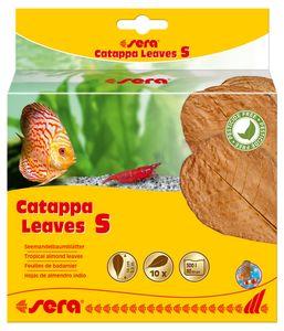 sera Catappa Leaves S Seemandelbaumblatt Süßwasser Wasseraufbereitung