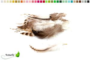 20 Hahnenfedern CHINCHILLA ca. 8-13cm, Farbauswahl:naturell