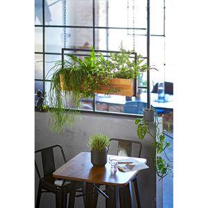 Pflanzenhänger Industrial