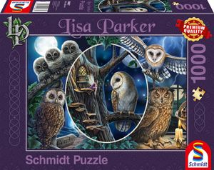 Schmidt Spiele 59667 Lisa Parker Geheimnisvolle Eulen 1000 Teile Puzzl