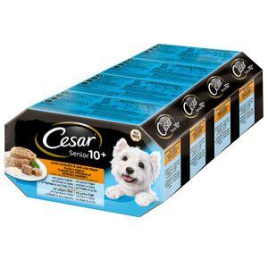 Cesar Alu Multipack Senior  Hundefutter  24x150 g