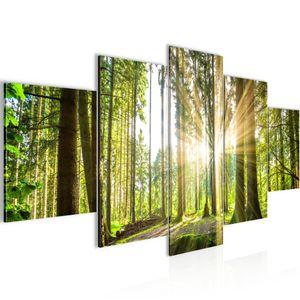 Wald Landschaft BILD :150x100 cm − FOTOGRAFIE AUF VLIES LEINWANDBILD XXL DEKORATION WANDBILDER MODERN KUNSTDRUCK MEHRTEILIG 503853b