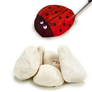 Topf mit Steinen zum Bemalen - Dekosteine 1 Kg