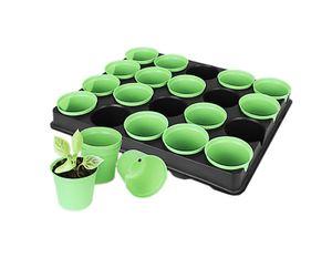 20x Anzuchttöpfe mit Pflanzschale, um Anpflanzen von Saat und Ziehen von Setzlingen, herausnehmbare Saattöpfe mit Wasserabfluss und Anzuchtplatte